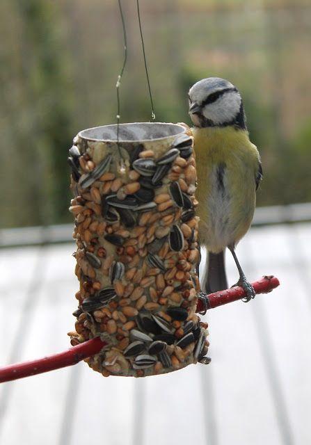 hrănitori pentru păsări