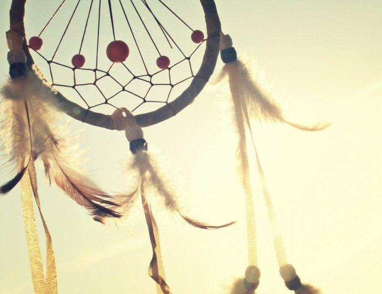Capcana de vise – o poveste frumoasă și un proiect DIY